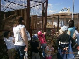 В Минском зоопарке
